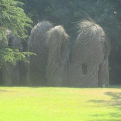 Les Cabanes de Patrick Dougherty