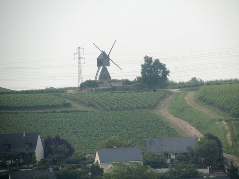 Le Moulin de la Tranchée, dans les Vignes au Dessus de Montsoreau