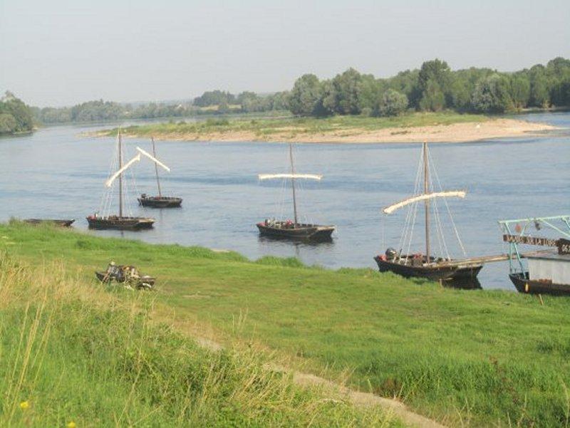 Gabares Sur La Loire