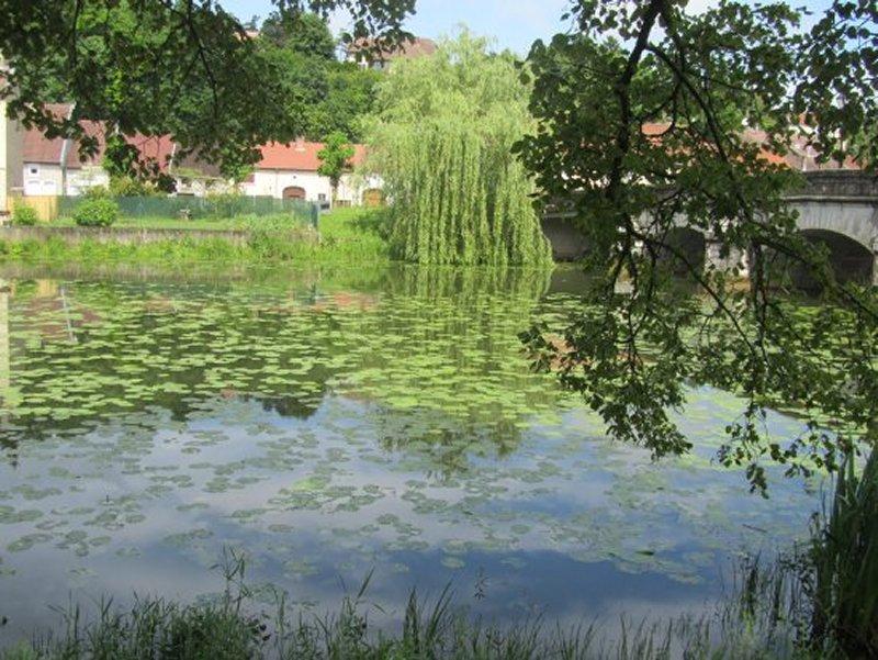 La Meuse à Bazoilles sur Meuse