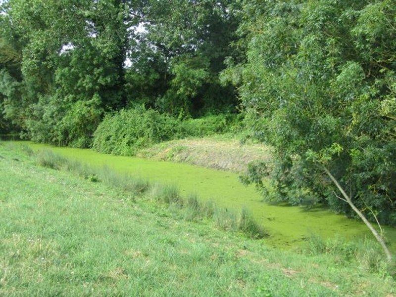 Le Marais Poitevin Sauvage