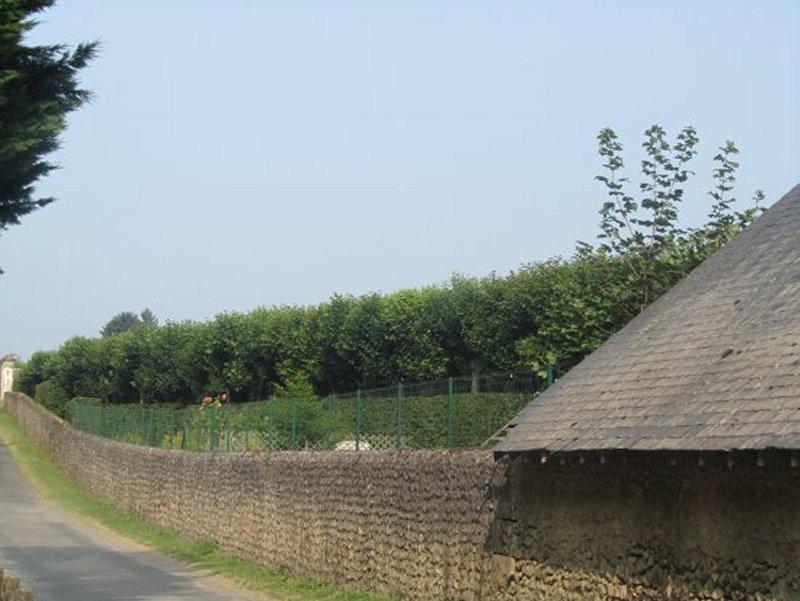 Le Long des Jardins du Château de Villandry