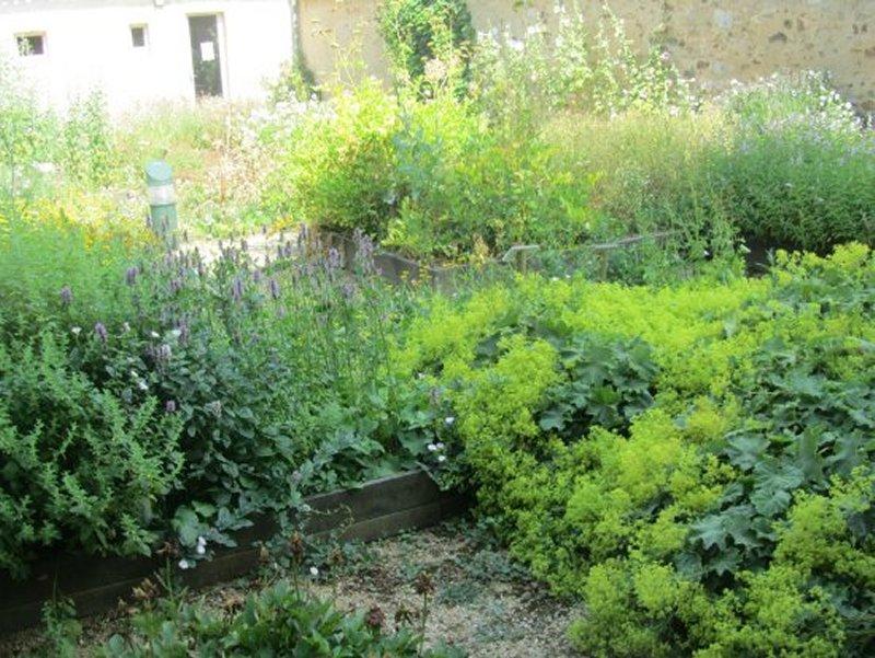 Le Jardin de Plantes Médicinales de Saint Marc La Lande