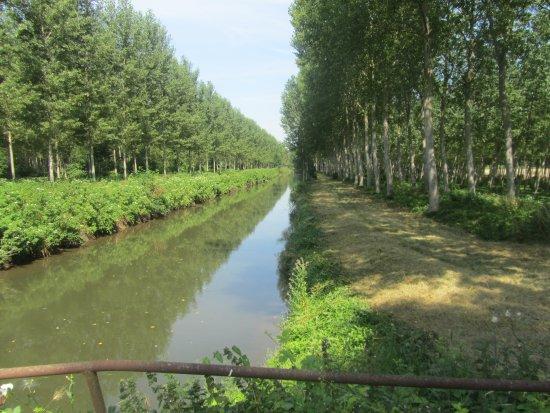 le Canal de la Dive