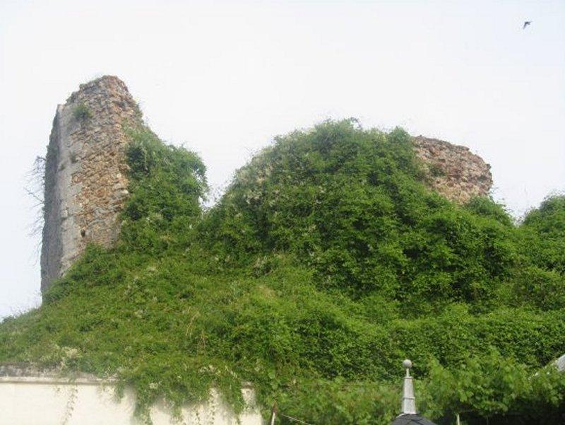Les Ruines du Château de Saint Gondon
