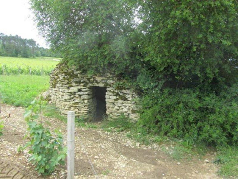 Cabane, dite Cadole, au Milieu des Vignes