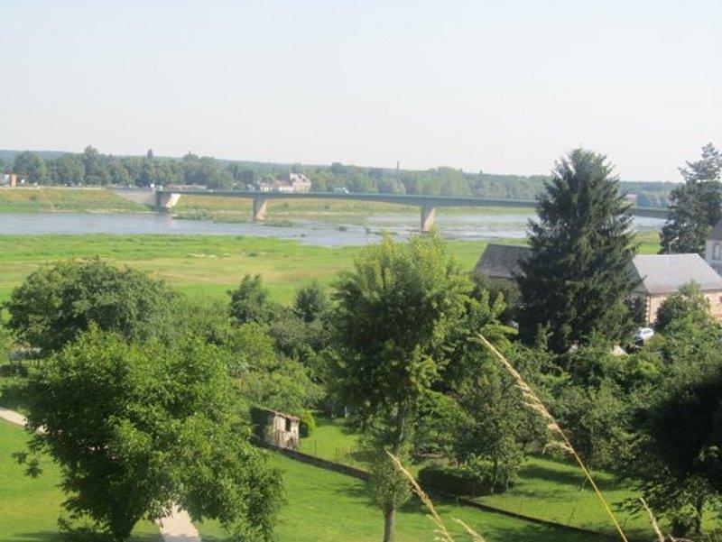 La Loire Vue du Château de Chaumont Sur Loire