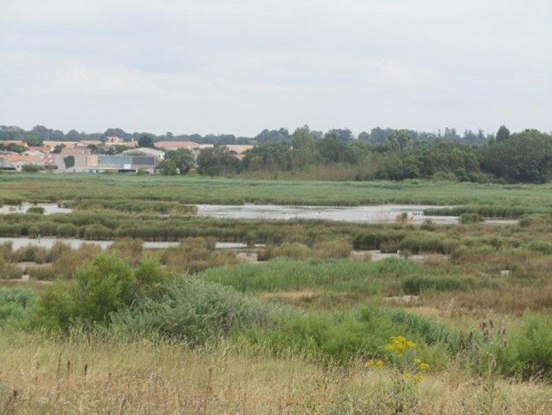 Le Marais de Pampin