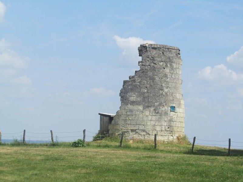 Ancien Moulin de la Pelouse à Candes Saint Martin