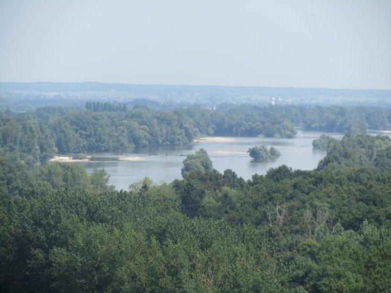 La Loire à Candes Saint Martin